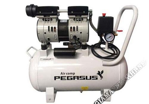 Máy nén khí không chứa dầu hiệu Pegasus