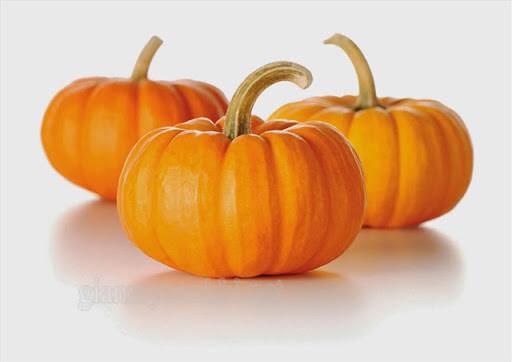 Mua quả bí ngô halloween ở đâu