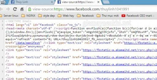 Giao diện Trang chứa mã Facebook