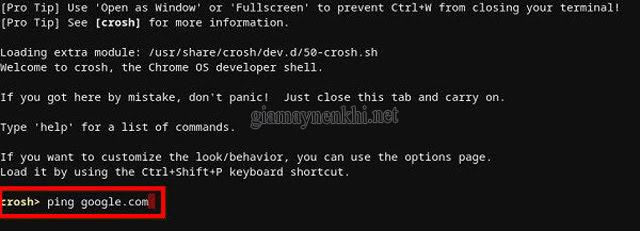 Hướng dẫn Ping địa chỉ IP từ Chromebook